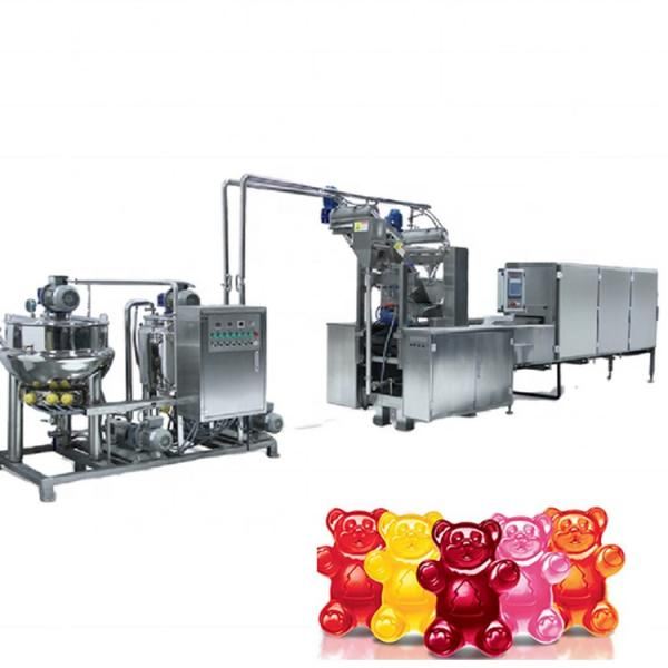 Full automatic Vitamin Gummy bear candy depositor production line candy making machines