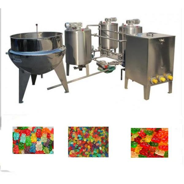 Small Jelly/Gummy Bear Candy Machine Line with Factory Price